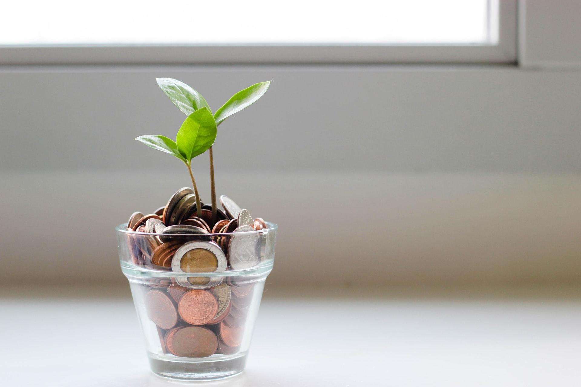 Bingung Mau Investasi Saham Atau Reksadana? Baca Dulu Ini